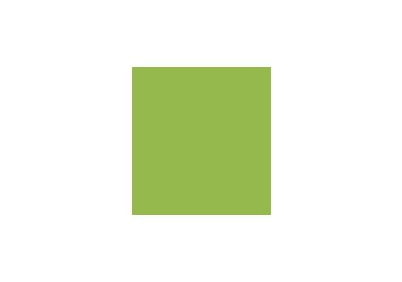 Plantur 21 Logo